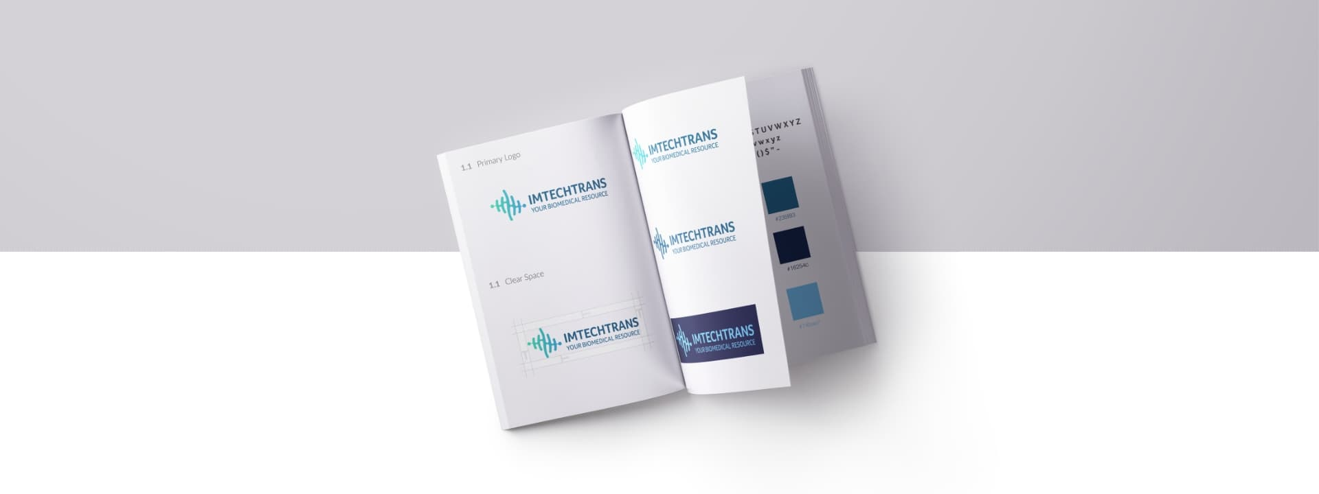 ImTechTrans Brand Book with logo color variations